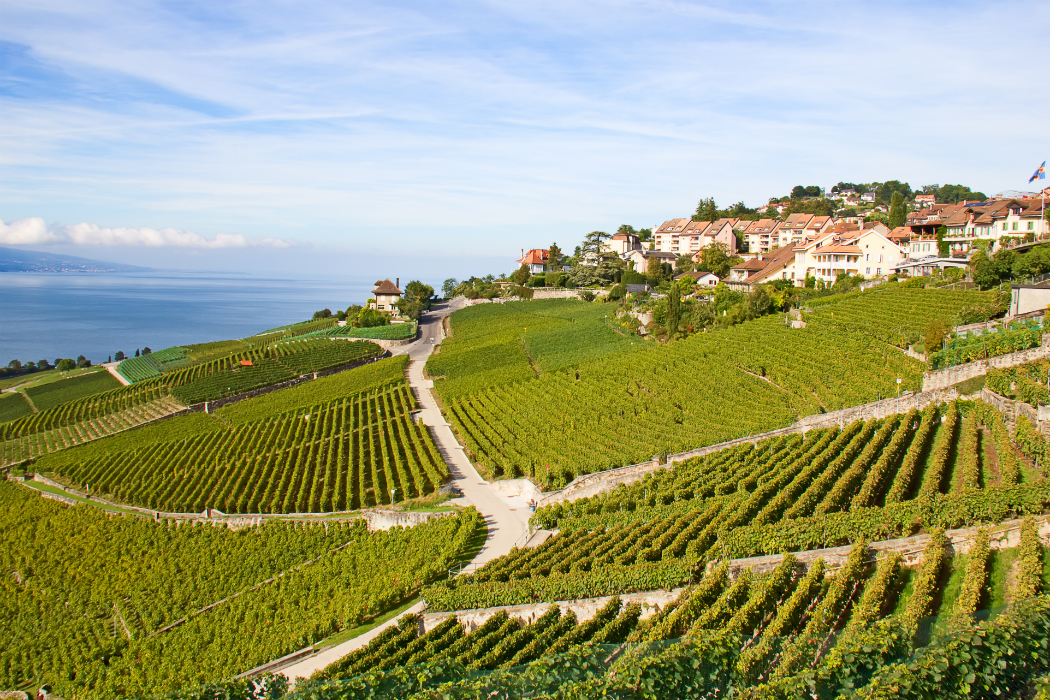 The ultimate river cruise bucket list for Champagne region in france