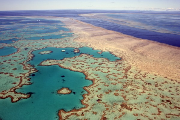 Places: great barrier reef