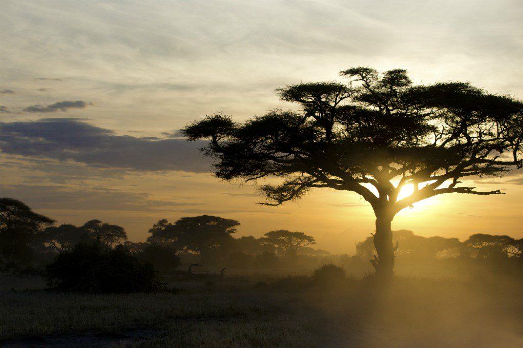 Africa cruises: Kenya