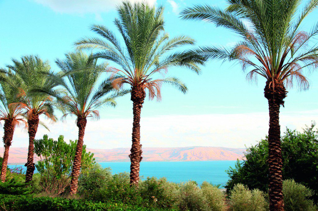 Middle East: Haifa