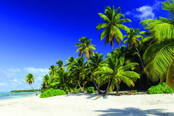 cruises to the us and caribbean