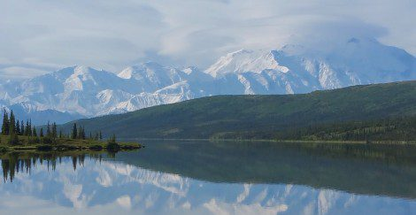 Denali National Park*