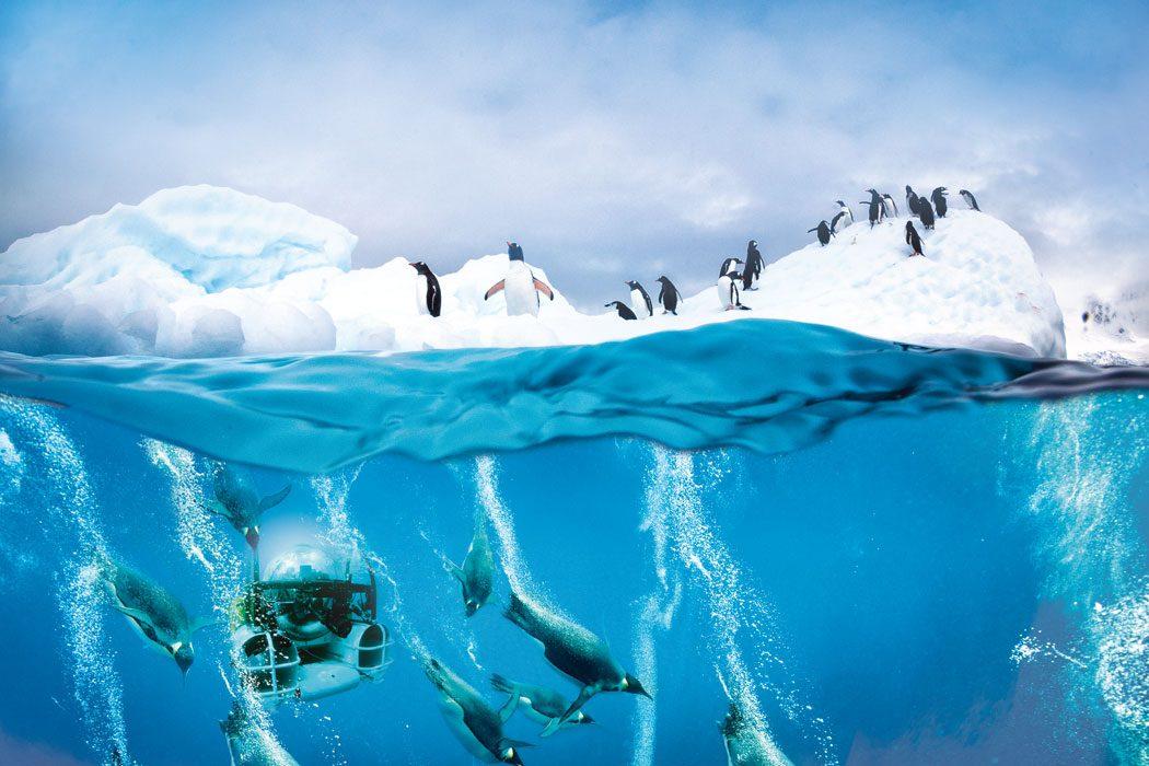 Antarctic-+-Sub-WM-FINAL-FLAT-CMYK