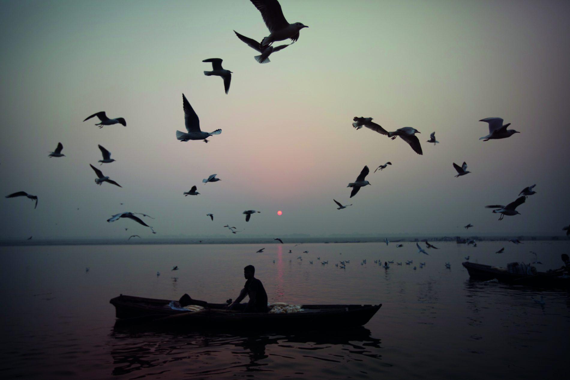 ca Ganges River Sunrise Boat Birds - MG0079 Lg RGB (2)