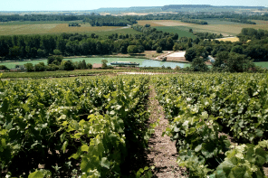 Exploring champagne with European Waterways